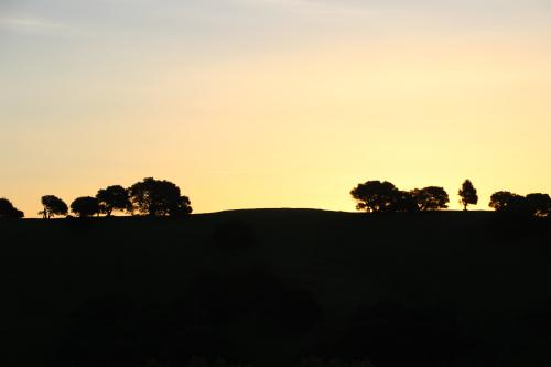 sunrise at earthrise