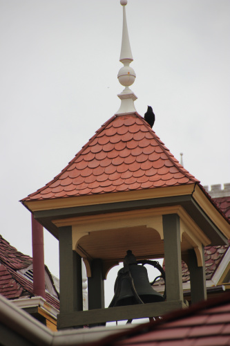 crow on bell tower 003