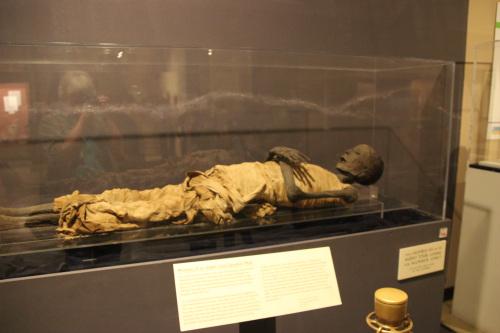 museum mummy 001