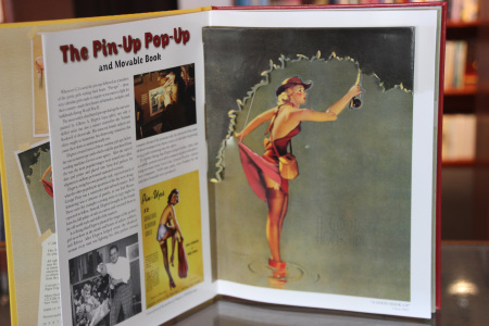 pin up pop up