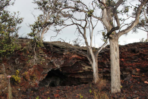 lava tube with trees