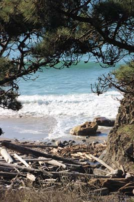 View of beach from cliff