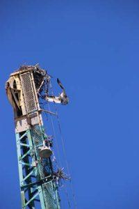 Osprey Flies toward next atop ship crane boom.