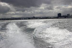 Wake in Reykjavik Harbor