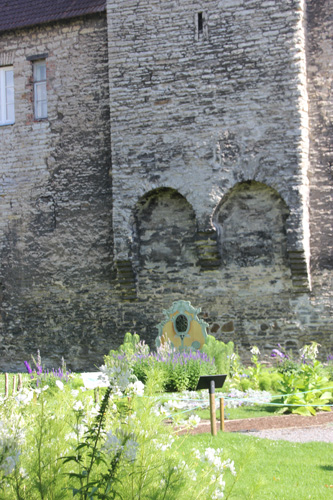 Garden and wall.
