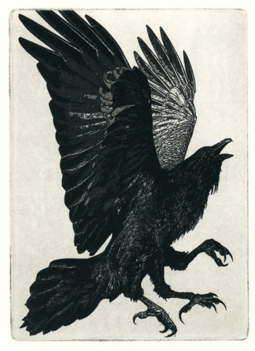 """We totally Got them! They did not see 2017 coming!"" says the three-legged crow. Larry Vienneau, The Three Legged Birds, Etching 2010"