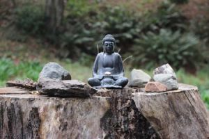 A black stone Buddha on a madrone stumps, surrounded by stones.