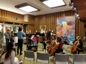 The Young People's Chamber Orchestra