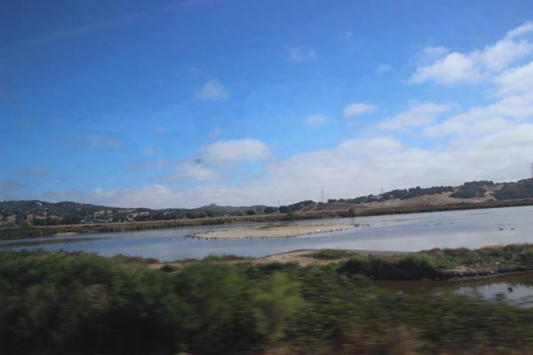 Wetlands and blue sky on the way to San Rafael.