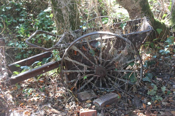 Cart wheel in John Chambers's Yard.