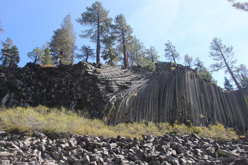 Devil's postpile showing columns end on, curved, twisting, and upright, topped with trees, blue sky