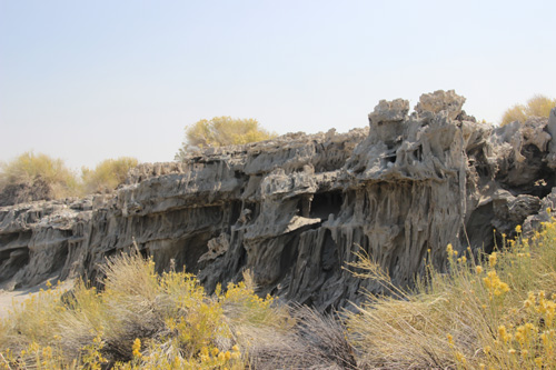 A row of currugated limestone tufas coated with ghostly gray sand.